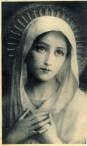 Blessed Virgin Mary